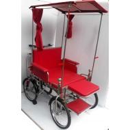 Maharaj Vihar Wheel Chair