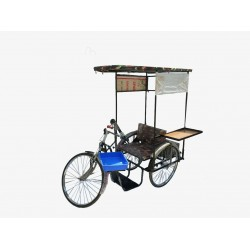 Self Employed Tricycle For Handicapped